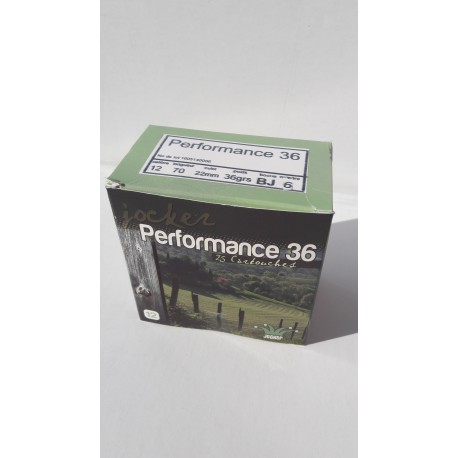 Performance 36 N°6